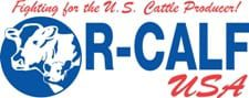 New RCALF logo 2c web
