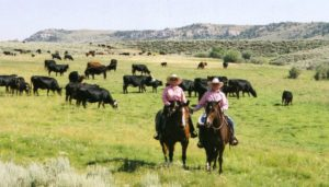 Chuck Roni on horseback