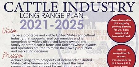 Long Range Plan 2021